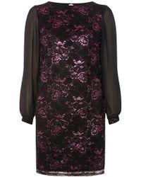Dorothy Perkins - Billie & Blossom Pink Shimmer Lace Shift Dress - Lyst