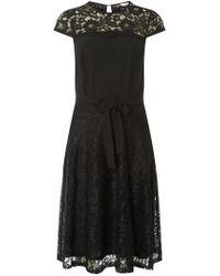 4abbdc428bd Lyst - Dorothy Perkins Billie   Blossom Black Chiffon Midi Dress in ...