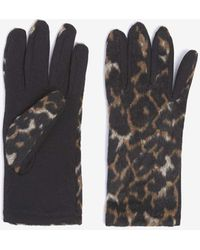 Dorothy Perkins - Leopard Print Gloves - Lyst