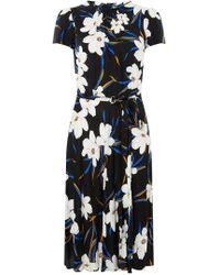 5dea3fac261 Dorothy Perkins - Billie   Blossom Tall Black Floral Skater Dress - Lyst
