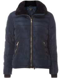 Dorothy Perkins - Navy Faux Fur Collar Padded Coat - Lyst