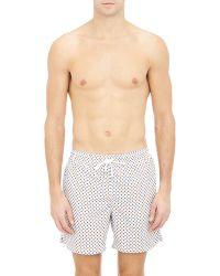 Petronius - Floral Swim Shorts-Multi Size Xxl - Lyst