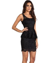 Blaque Label Lace Dress in Black - Lyst