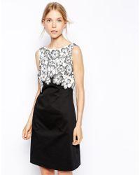 Coast Floral Cozza Dress - Lyst
