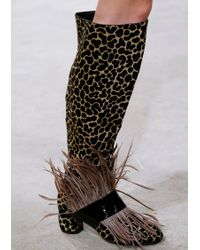 House of Holland | Ss16 'fear And Loafing' Camel Knee High Boots | Lyst