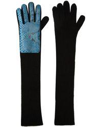 Christopher Kane - Navy Long Snakeskin Gloves - Lyst