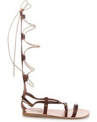 Ancient Greek Sandals Sofia High Gladiator Lace-Up Leather Sandals brown - Lyst