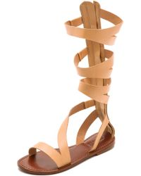 Schutz Bilquis Flat Gladiator Sandals - Tanino - Lyst