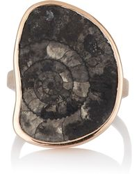 Dezso by Sara Beltran - Fossilized Ammonite Ring - Lyst