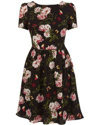 Oasis Rose Print Skater Dress - Lyst