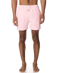 Solid & Striped - The Classic Pink Trunks - Lyst