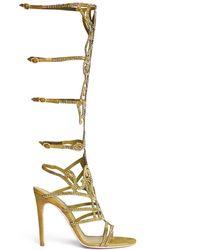 Rene Caovilla 'Marlene' Crystal Spiral Venetian Sandals - Lyst