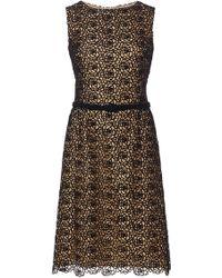 Oscar de la Renta Floral Lace Cotton Day Dress - Lyst