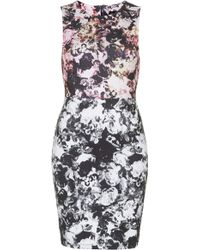 Topshop Womens Petite Photo Floral Bodycon Dress Multi - Lyst