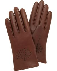 Mulberry Tree Glove - Lyst