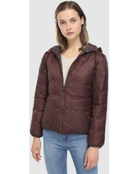 indi & cold - Short Hooded Quilted Coat - Lyst
