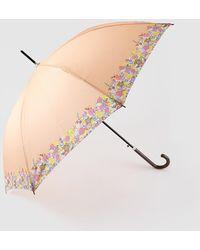 Caminatta Paraguas Largo En Naranja Con Detalle Estampado