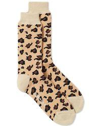 MAPLE - Safari Sock - Lyst