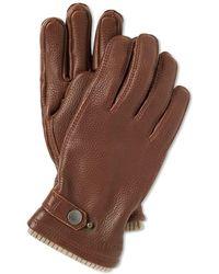 Hestra - Elk Utsjö Glove - Lyst