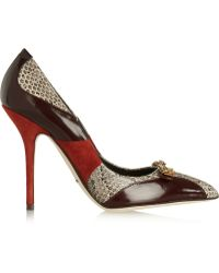 Dolce & Gabbana Bellucci Embellished Leather Suede and Elaphe Pumps - Lyst