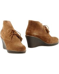 Scholl | Ankle Boots | Lyst