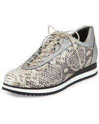 Stuart Weitzman Relay Python-print Sneaker - Lyst