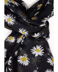 Forever 21 - Daisy Field Woven Scarf - Lyst