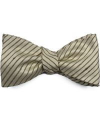 Louise & Zaid - Ivory Silk Bow Tie - Lyst
