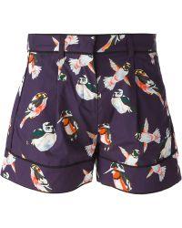 MSGM Bird Print Shorts - Lyst