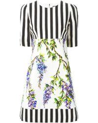 Dolce & Gabbana Striped Wisteria Print Dress - Lyst