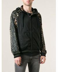 Roberto Cavalli Jaguar Intarsia Sweatshirt - Lyst