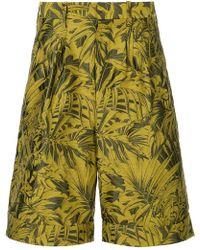 Cerruti 1881 - Tropical-print Bermuda Shorts - Lyst