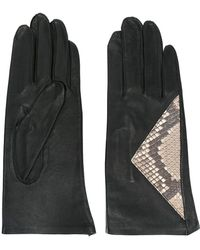 Jean Paul Gaultier - Snakeskin Panel Gloves - Lyst