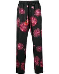 Dolce & Gabbana - Peony Print Trousers - Lyst