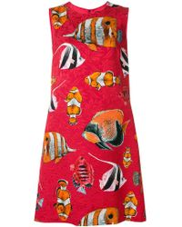 Dolce & Gabbana - Fish Print Mini Dress - Lyst