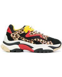 Ash - Leopard Lace-up Trainers - Lyst