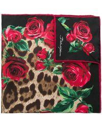 Dolce & Gabbana - Leopard Rose Print Square Scarf - Lyst