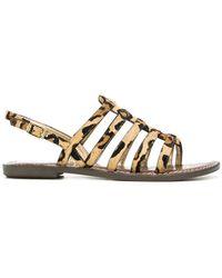 Sam Edelman - Strappy Leopard Print Sandals - Lyst