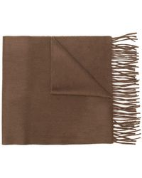 Begg & Co - Classic Fringed Cashmere Scarf - Lyst