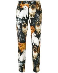 Dolce & Gabbana | Cat Print Cropped Trousers | Lyst