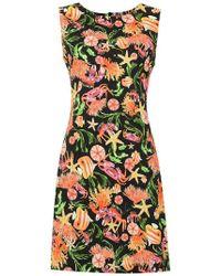 Isolda - 'sofie' Printed Dress - Lyst
