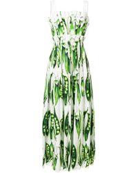 Dolce & Gabbana - Pea Printed Dress - Lyst