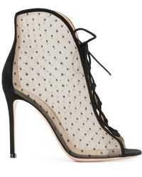 Gianvito Rossi - Point D'esprit Lace-up Ankle Booties - Lyst