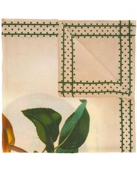Massimo Alba - Botanical Print Scarf - Lyst