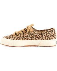 Superga Leopard Sneaker - Lyst