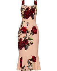 Dolce & Gabbana Rose-Print Fluted Cady Dress pink - Lyst