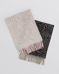 C By Bloomingdale's Zebra Cashmere Scarf - Lyst