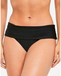 Panache - Anya Fold Bikini Brief - Lyst