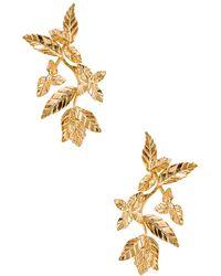 Christie Nicolaides - Primavera Earrings - Lyst
