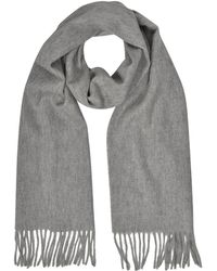 Mila Schon - Cashmere and Wool Taupe Fringed Long Scarf - Lyst